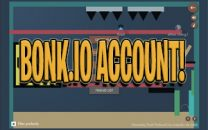 Important Facts About Bonk.io Account